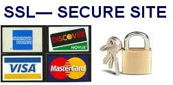 This site is secured so you can trust your credit card number will be protected(encrypted with SSL)